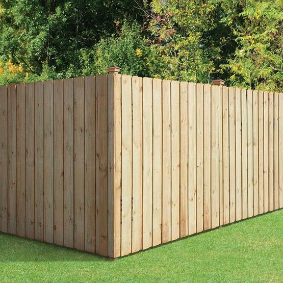 wood fence by green grass